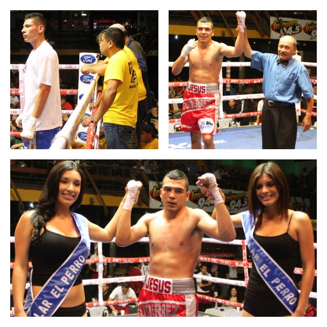 (bottom) Antonio Gutierrez has his arms raised in victory by the two lovely ring card girls on Wednesday evening, May 1, 2013 at Las Pulgas Nightclub in downtown Tijuana.