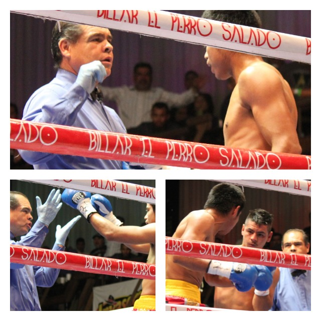 Bout 6 c Fight of the night continuesCollage