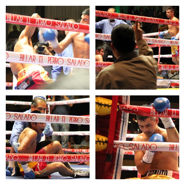 Bout 6 - three knockdownsCollage