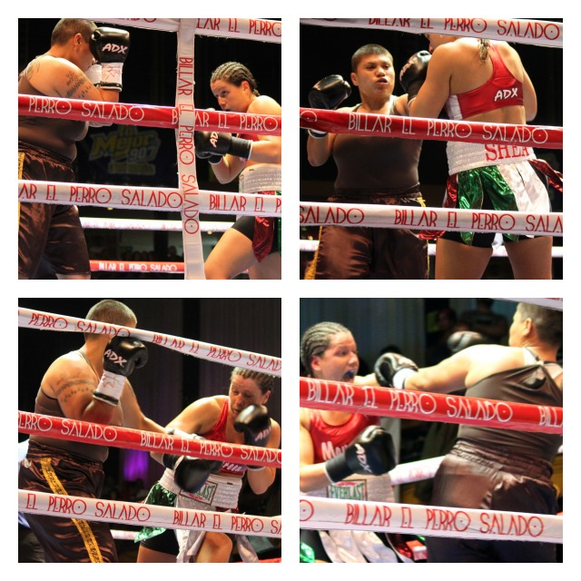 """In Bout #8, Maureen """"The Real Million Dollar Baby"""" Shea (18-2-0, 11 KOs) was in town from Ventura, CA by way of the Bronx, New York. Shea is a petite super featherweight who somehow got matched up with Silvia """"Dinamita"""" Zúñga (5-11-0, 1 KO)"""