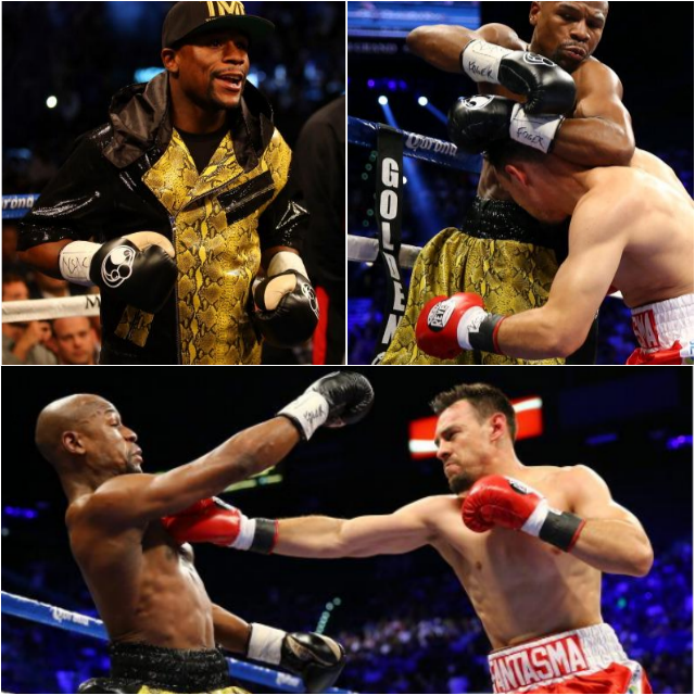 Rd 1 Mayweather Collage
