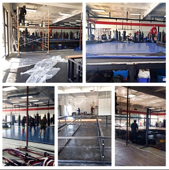 Completely revamped Arena Gym