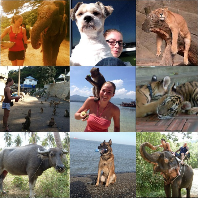 From the looks of these photos it is a given Jorina Baars is an animal lover.