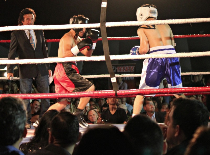 Here we see the two jockeys, Elvis Trujillo (r) and Corey Nakatani (l) in head gear battling out. To the left is ring announcer Benny Ricardo taking on the duties of referee. Photo: Jim Wyatt