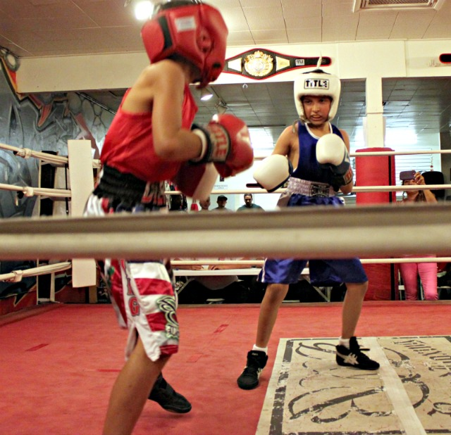 Cuba's Secret. The secret to Cuba's success is that there is no secret. Cuban boxers begin training as youngsters. There is a boxing academy in each of Cuba's 14 provinces.