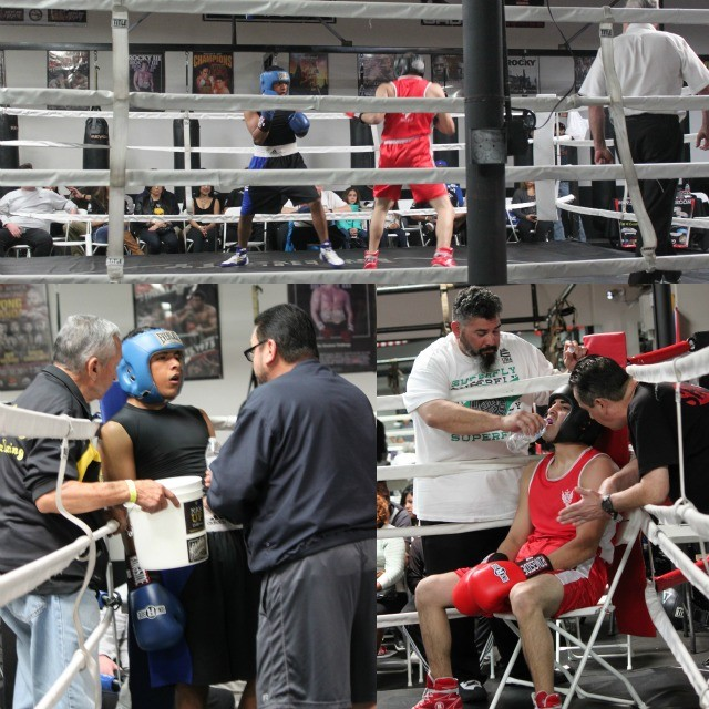 (bottom photos, l to r) In Bout #1 it was Armando Tovar, seen here in-between rounds, talking over strategy with coaches Carlos Barragan  and Carlos Barragon, Snr. In the red corner, we see Ulises Zumaya of the Alliance Training Center receiving instructions from his coach Brian Llano and head coach Sergio Melendrez from the Alliance Training Center.