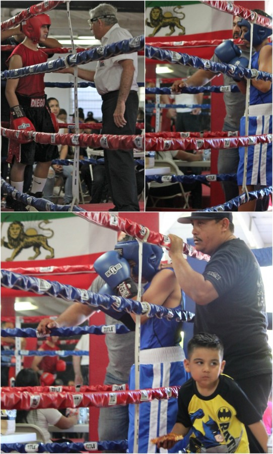 (photo, left) Diego Demara (red gloves) of Baja Boxing prepares for round one versus Mario Salas of The Arena. (top right) Demara's opponent Salas listens to last minute instructions from his coach. Meanwhile, a youngster wearing a Batman shirt and carrying a slice of pizza attempts to traverse the apron. (bottom, right) Referee Will White issues Salas his first of three 8-counts. Photos: Jim Wyatt