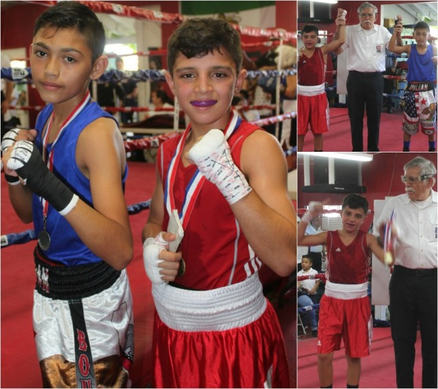 In the end it was the determined Julius Ballo coming away with the Silver Gloves