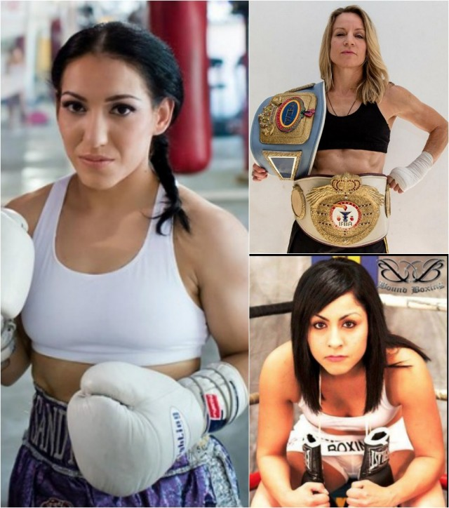 "The ladies pugilists: Sindy Amador (l) then right, top to bottom, Jolene Blackshear and Amaris ""Diamond Girl"" Quintana."